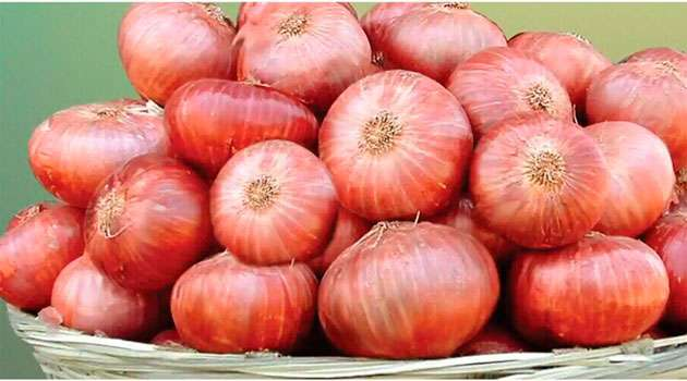 Eating raw onion with meals health benefits telugu